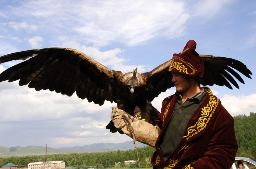 Falconer in Mongolia